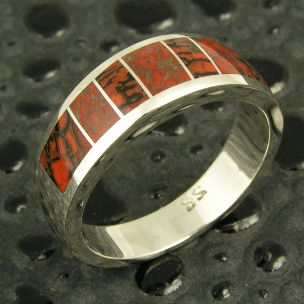 Meteorite Dinosaur Bone Inlaid Rings